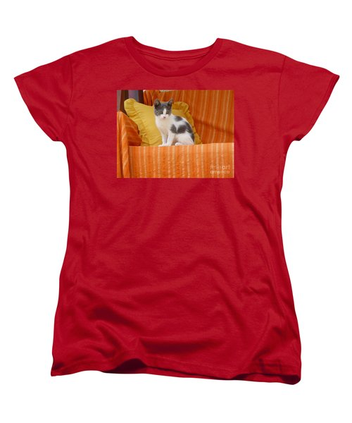 Women's T-Shirt (Standard Cut) featuring the photograph Cute Kitty by Vicki Spindler