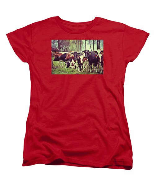 Dutch Cows Women's T-Shirt (Standard Cut) by Nick  Biemans