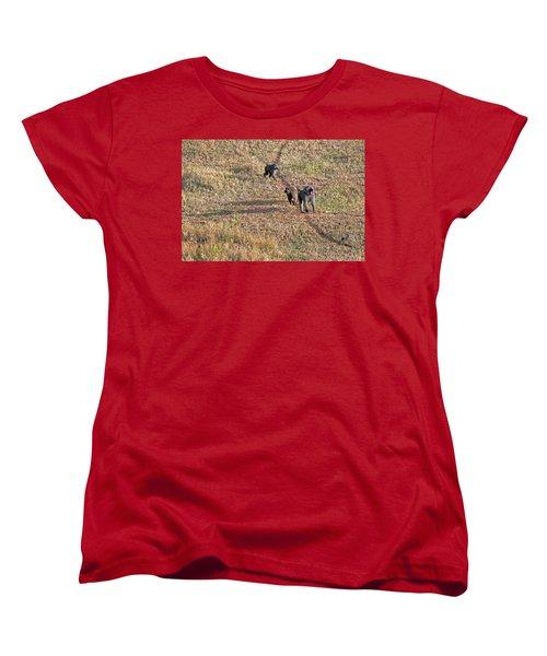 Early Morning Stroll Women's T-Shirt (Standard Cut) by Tony Murtagh