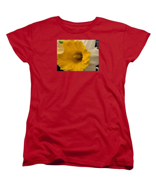 Easter 2014-3 Women's T-Shirt (Standard Cut) by Jeff Iverson