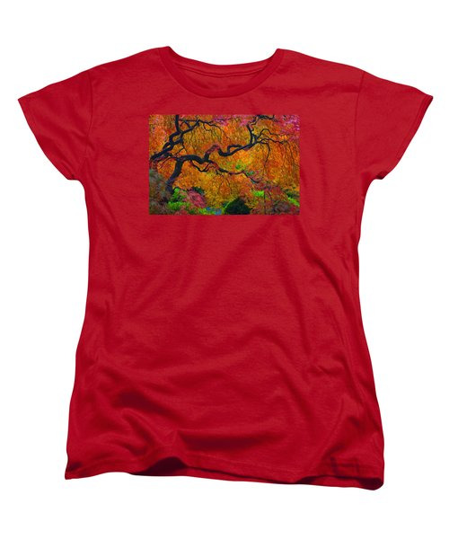 Enchanted Canopy Women's T-Shirt (Standard Cut) by Patricia Babbitt