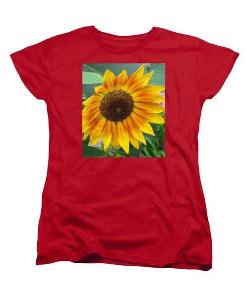 Women's T-Shirt (Standard Cut) featuring the photograph End Of Summer Sunflower by Barbara McDevitt