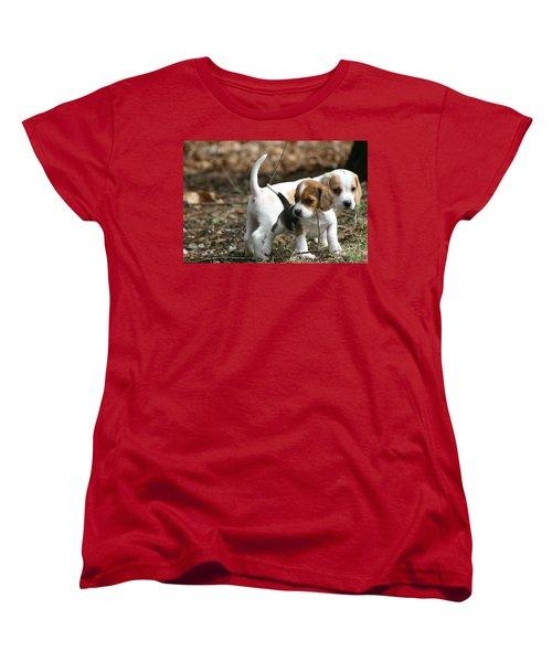 Exploring Beagle Pups Women's T-Shirt (Standard Cut) by Neal Eslinger