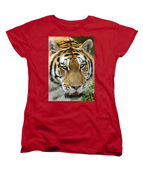 Women's T-Shirt (Standard Cut) featuring the photograph Eyes Of The Tiger by John Haldane