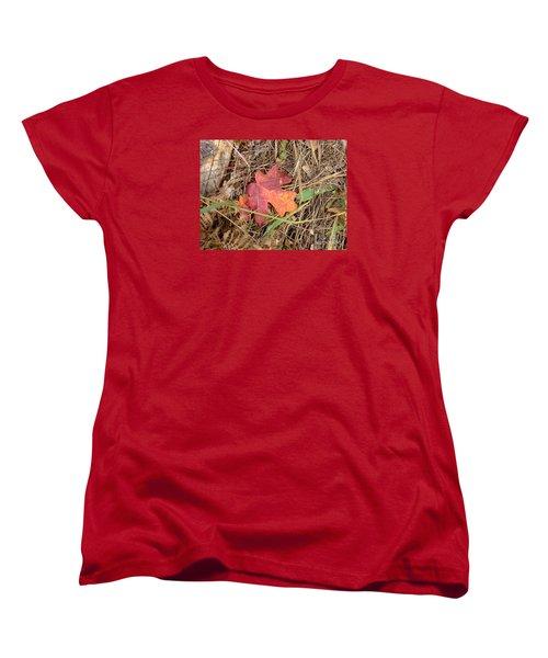 Fall Colors 6312 Women's T-Shirt (Standard Cut) by En-Chuen Soo