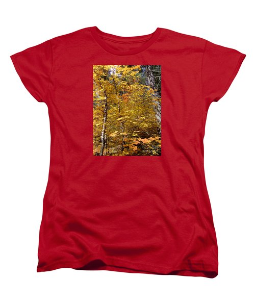 Fall Colors 6446 Women's T-Shirt (Standard Cut) by En-Chuen Soo
