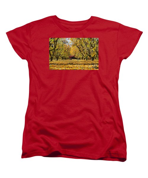 Fall In The Peach Orchard Women's T-Shirt (Standard Cut) by Jim And Emily Bush
