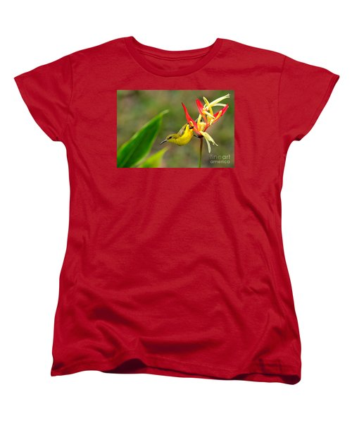 Female Olive Backed Sunbird Clings To Heliconia Plant Flower Singapore Women's T-Shirt (Standard Cut) by Imran Ahmed