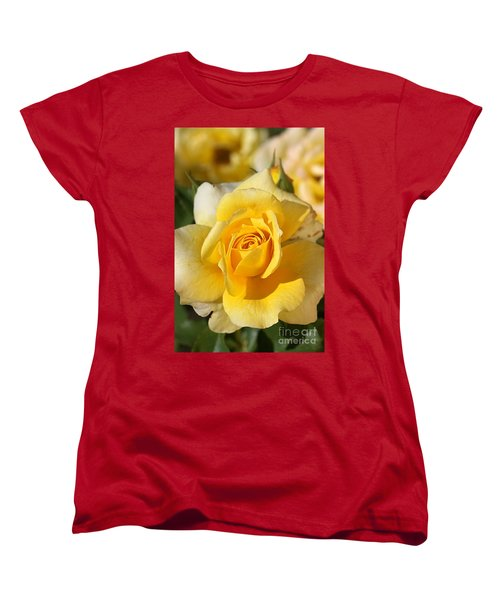 Flower-yellow Rose-delight Women's T-Shirt (Standard Cut) by Joy Watson
