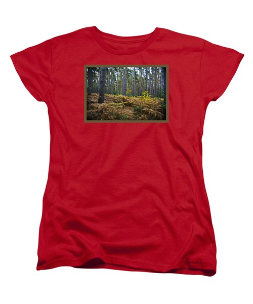 Women's T-Shirt (Standard Cut) featuring the photograph Forest Trees by Maj Seda