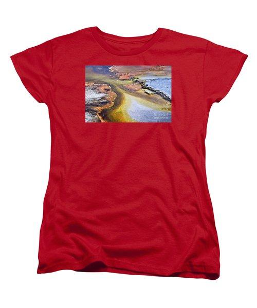 Fountain Paint Pot Women's T-Shirt (Standard Fit)