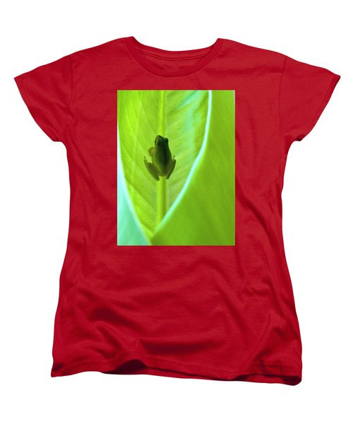 Women's T-Shirt (Standard Cut) featuring the photograph Frog In Blankie by Faith Williams