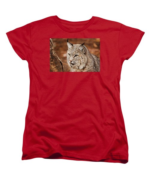 God I'm Handsome Women's T-Shirt (Standard Cut) by Lori Tambakis