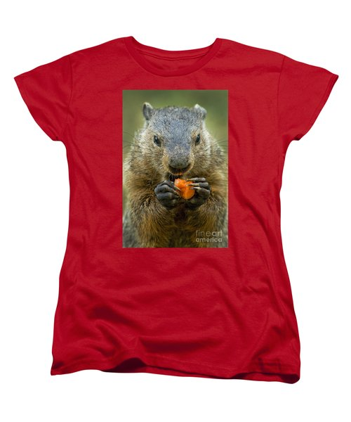 Groundhogs Favorite Snack Women's T-Shirt (Standard Cut) by Paul W Faust -  Impressions of Light
