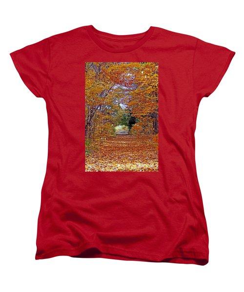 Hawthorn Hollow Women's T-Shirt (Standard Cut) by Kay Novy