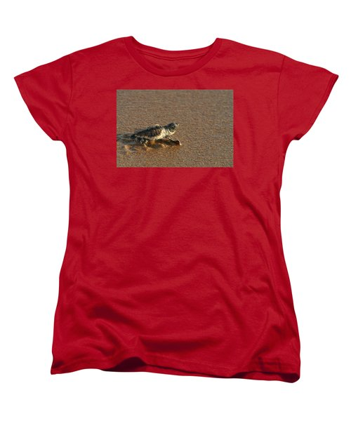 Heading Out To Sea Women's T-Shirt (Standard Cut) by Paul Rebmann