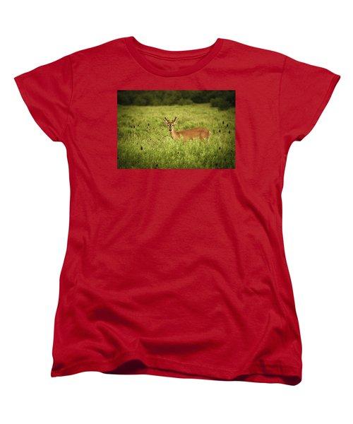Hi Women's T-Shirt (Standard Cut) by Shane Holsclaw