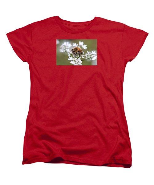 Honeybee On Cilantro Women's T-Shirt (Standard Cut) by Lucinda VanVleck