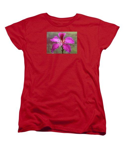 Hong Kong Orchid Tree Flower Women's T-Shirt (Standard Cut) by Venetia Featherstone-Witty