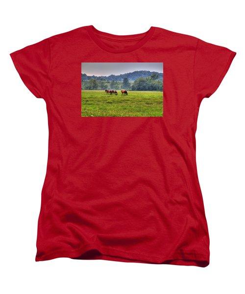Horses In A Field 2 Women's T-Shirt (Standard Cut) by Jonny D
