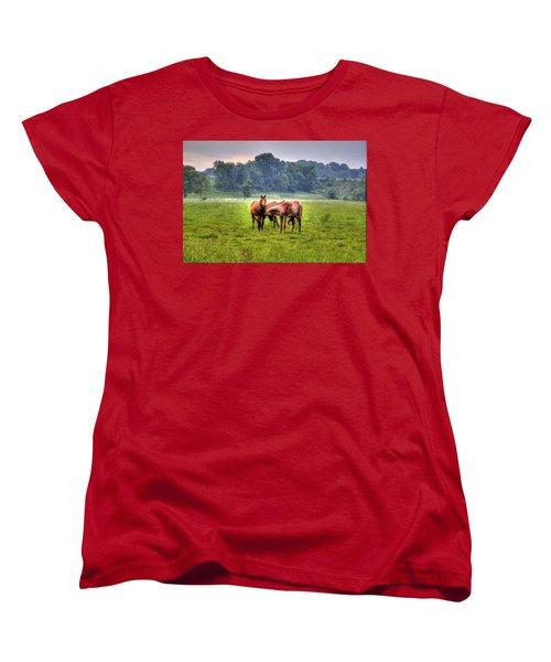 Horses Socialize Women's T-Shirt (Standard Cut) by Jonny D