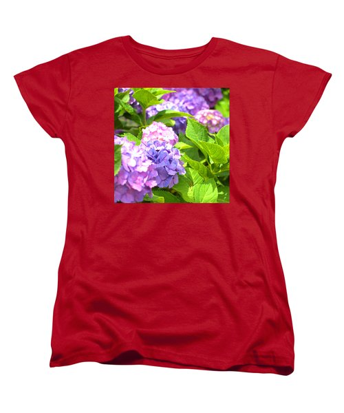 Hydrangeas In The Sun Women's T-Shirt (Standard Cut) by Rachel Mirror