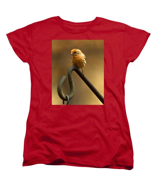 Women's T-Shirt (Standard Cut) featuring the photograph I'm Orange by Robert L Jackson