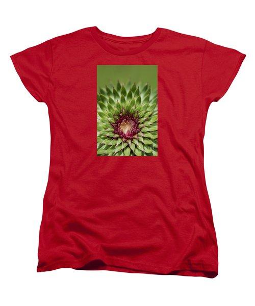 In Thistle's Heart Women's T-Shirt (Standard Cut) by Simona Ghidini