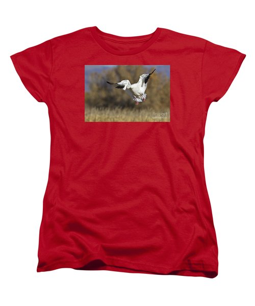 Women's T-Shirt (Standard Cut) featuring the photograph Incoming Snow Goose by Bryan Keil