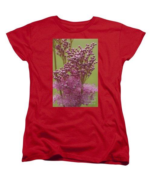 July Astilbe Women's T-Shirt (Standard Cut) by Patrick Fennell