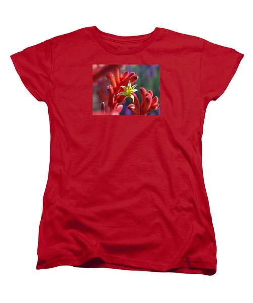 Kangaroo Star Women's T-Shirt (Standard Cut) by Evelyn Tambour