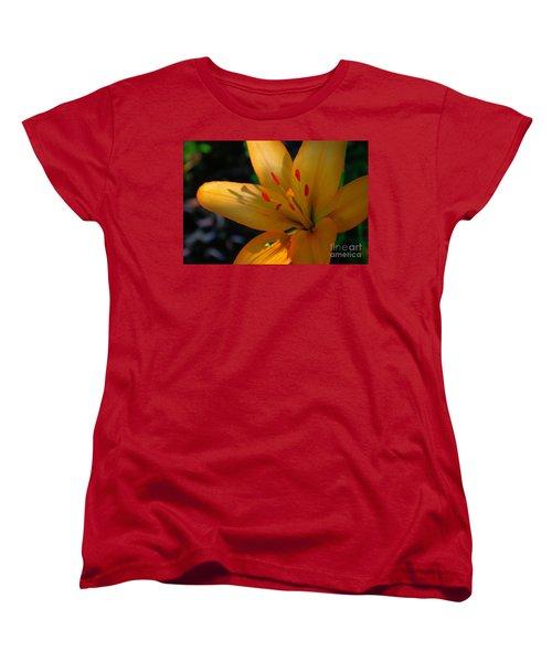 Women's T-Shirt (Standard Cut) featuring the photograph Kenilworth Garden One by John S