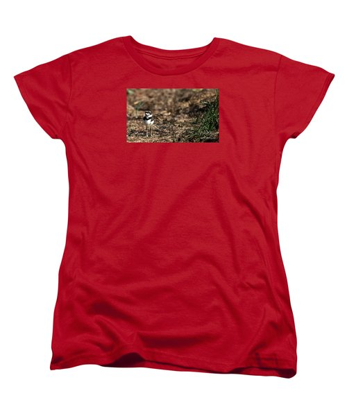 Killdeer Chick Women's T-Shirt (Standard Cut) by Skip Willits