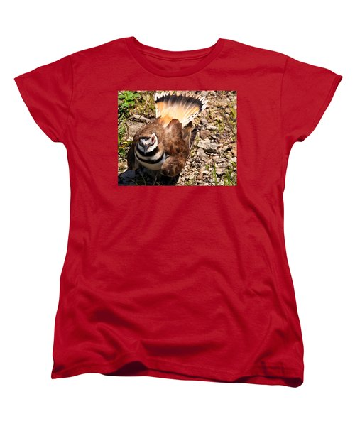 Killdeer On Its Nest Women's T-Shirt (Standard Cut)