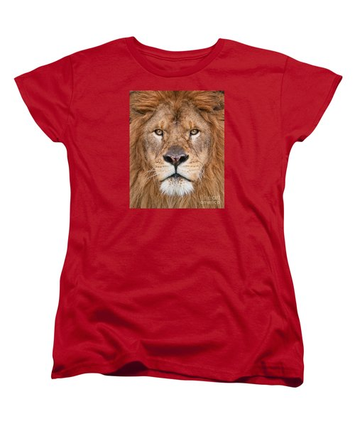 Lion Close Up Women's T-Shirt (Standard Cut) by Jerry Fornarotto