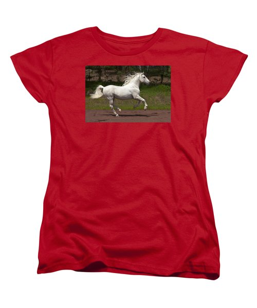 Lipizzan At Liberty Women's T-Shirt (Standard Cut) by Wes and Dotty Weber