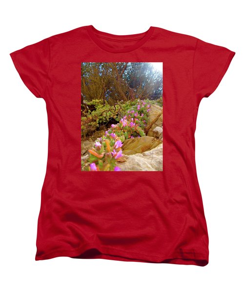Looking Up Women's T-Shirt (Standard Cut) by CML Brown