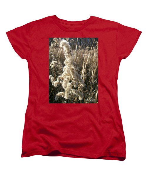 Women's T-Shirt (Standard Cut) featuring the photograph Looks Like Cotton by Sara  Raber