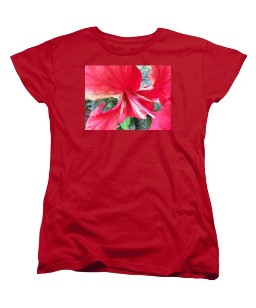 Macro Beauty Women's T-Shirt (Standard Cut) by Fortunate Findings Shirley Dickerson