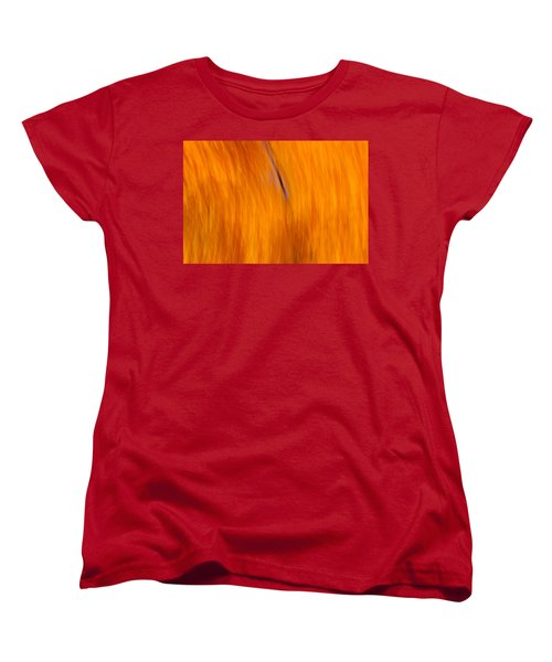 Women's T-Shirt (Standard Cut) featuring the photograph Maelstrom Of Fall Colors by Jeff Folger