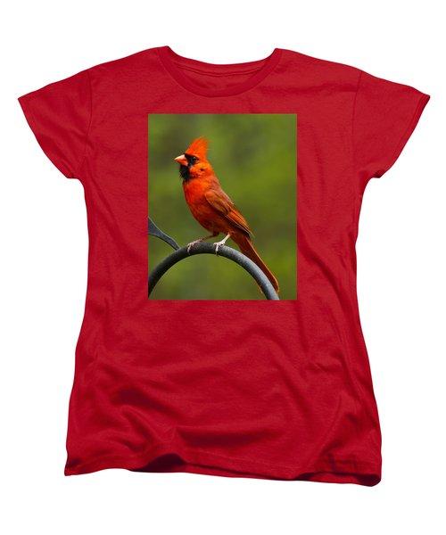 Women's T-Shirt (Standard Cut) featuring the photograph Male Cardinal by Robert L Jackson