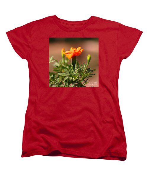Women's T-Shirt (Standard Cut) featuring the photograph Mary Reaches For The Sun by Joseph J Stevens