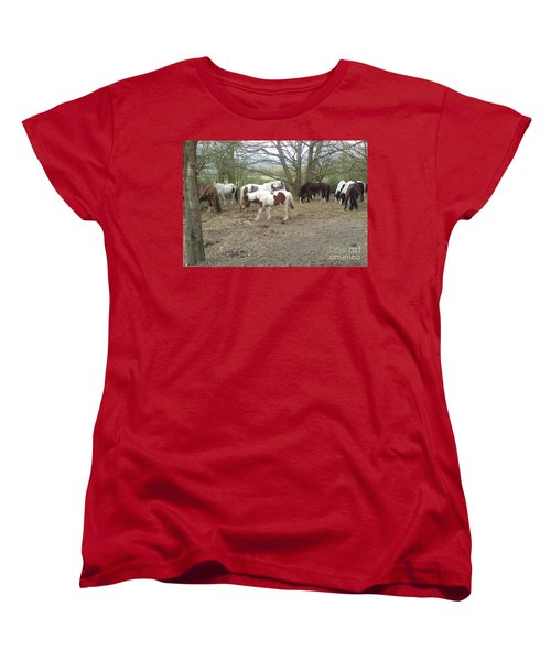 Women's T-Shirt (Standard Cut) featuring the photograph May Hill Ponies 2 by John Williams
