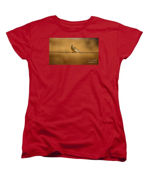 Meadowlark And Barbed Wire Women's T-Shirt (Standard Cut) by Robert Frederick