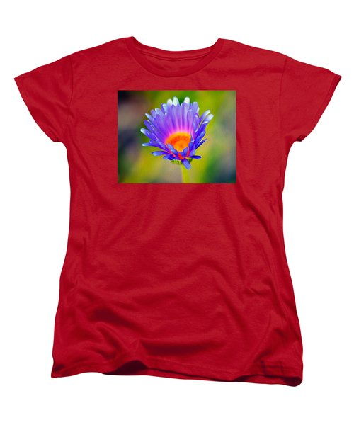Mojave Aster Women's T-Shirt (Standard Cut) by Joe Schofield
