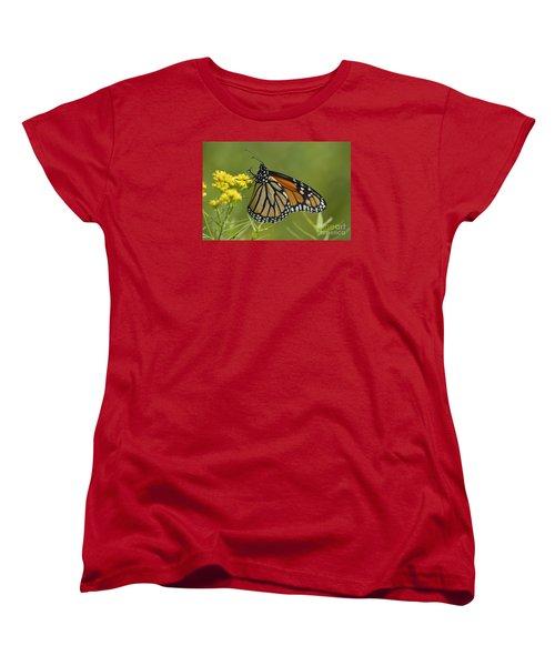 Women's T-Shirt (Standard Cut) featuring the photograph Monarch 2014 by Randy Bodkins