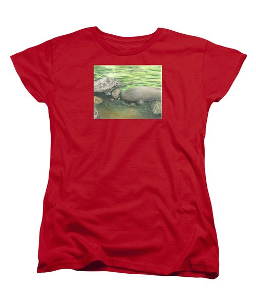 Mountain Stream Women's T-Shirt (Standard Cut)