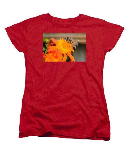 Carrying A Load Women's T-Shirt (Standard Cut) by Debra Martz