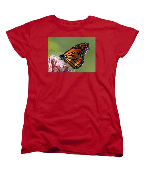Women's T-Shirt (Standard Cut) featuring the photograph Nectaring Monarch Butterfly by Debbie Oppermann