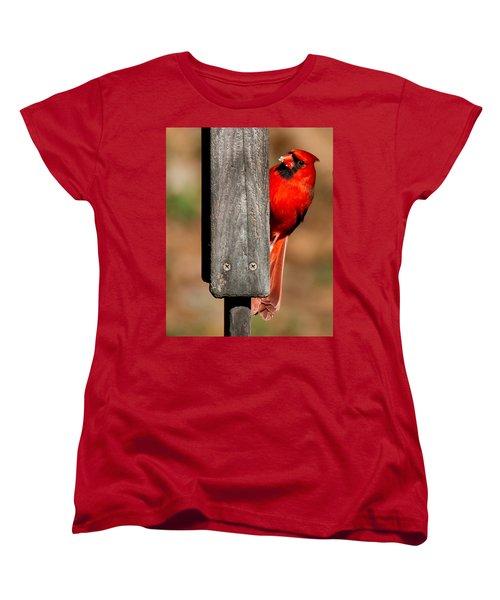 Women's T-Shirt (Standard Cut) featuring the photograph Northern Cardinal by Robert L Jackson